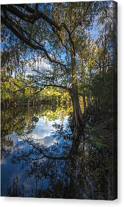 Quiet Embrace Canvas Print by Marvin Spates