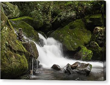 Canvas Print featuring the photograph Quiet Meditation  by Julie Andel