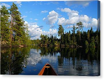 Quiet Paddle Canvas Print by Larry Ricker