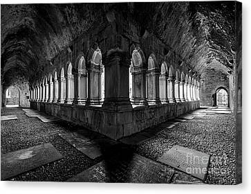 Canvas Print featuring the photograph Quin Abbey by Dennis Hedberg