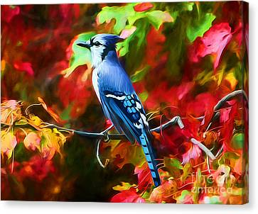 Quite Distinguished Canvas Print by Tina LeCour