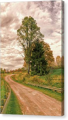 Canvas Print featuring the photograph Quixotic Travels by John M Bailey