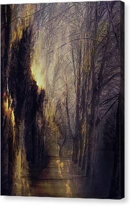 Quo Vadis  -  Memory Lane Canvas Print