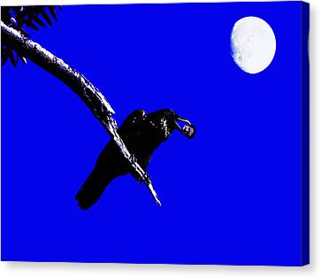 Quoth The Raven Nevermore . Blue Canvas Print by Wingsdomain Art and Photography
