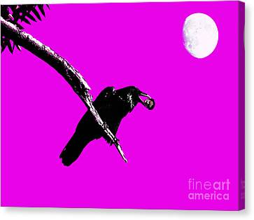 Quoth The Raven Nevermore . Magenta Canvas Print by Wingsdomain Art and Photography