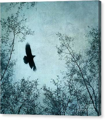 Natur Canvas Print - Spread Your Wings by Priska Wettstein