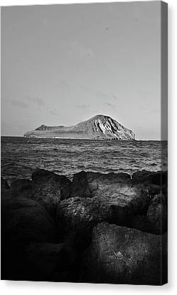 Rabbit Island From A Distance Canvas Print