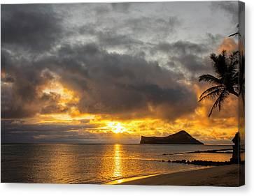 Nature Scene Canvas Print - Rabbit Island Sunrise - Oahu Hawaii by Brian Harig