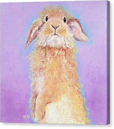 Rabbit Painting - Babu Canvas Print
