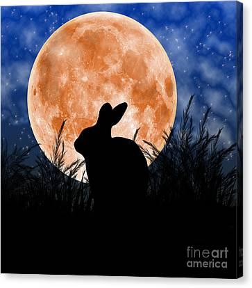 Rabbit Under The Harvest Moon Canvas Print by Elizabeth Alexander