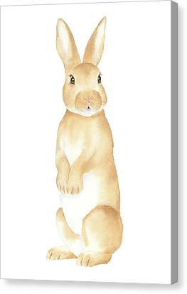 Canvas Print featuring the painting Rabbit Watercolor by Taylan Apukovska