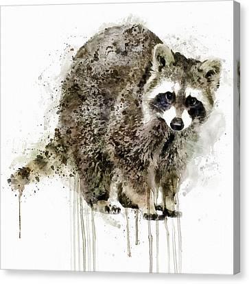 Raccoon Canvas Print by Marian Voicu
