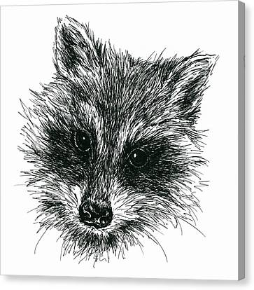 Raccoon Portrait In Ink Canvas Print