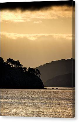 Raccoon Strait Canvas Print by John Hamlon
