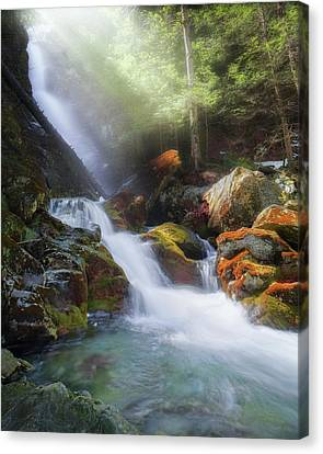 Canvas Print featuring the photograph Race Brook Falls 2017 by Bill Wakeley