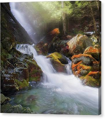 Canvas Print featuring the photograph Race Brook Falls 2017 Square by Bill Wakeley