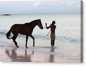 Race Horse And Groom 2 Canvas Print by Barbara Marcus