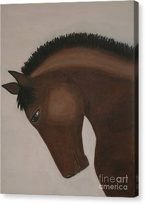 Race Horse Saturday Night Special Canvas Print