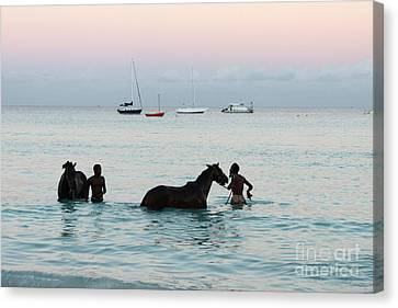 Race Horses And Grooms Canvas Print by Barbara Marcus