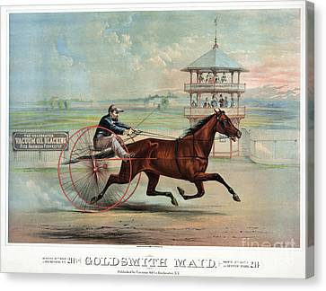 Racehorse: Goldsmith Maid Canvas Print by Granger