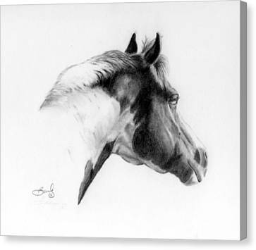 Racer Canvas Print by Beverly Johnson