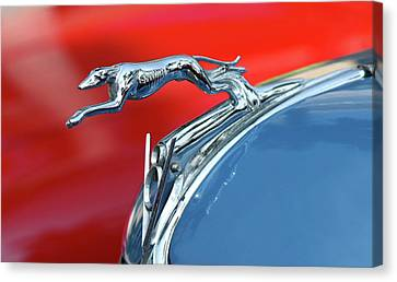 Racer Canvas Print by Rebecca Cozart