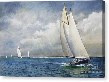 Racing The Wind Canvas Print by Karol Wyckoff