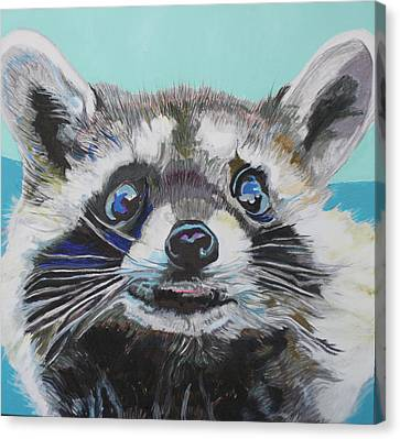 Racoon Canvas Print by Jamie Downs