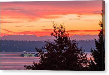 Radiance At Sunrise Canvas Print