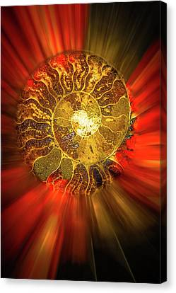 Radiance Canvas Print by Mark Dunton