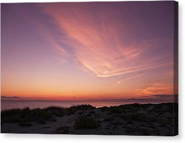 Canvas Print featuring the photograph Radiant Painting Of The Sky At Sunset  -  Venbchsunset135136 by Frank J Benz