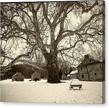 Radio Flyer At Lafayette Head In Snow Canvas Print by Jack Paolini