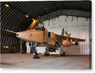 Raf Sepecat Jaguar Gr3a Canvas Print by Tim Beach