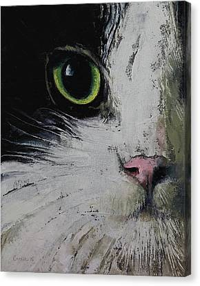Close Up Canvas Print - Tuxedo Cat by Michael Creese