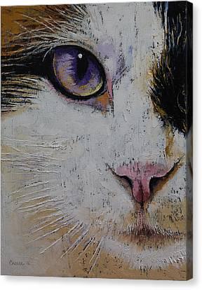 Ragdoll Canvas Print by Michael Creese