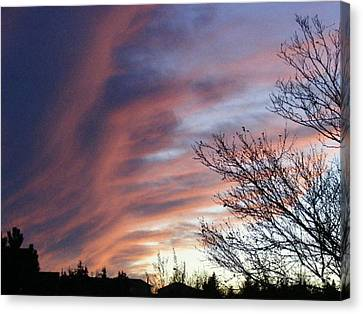 Canvas Print featuring the photograph Raging Sky by Barbara Griffin
