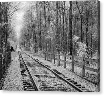 Railroad Tracks Canvas Print by Fred Baird