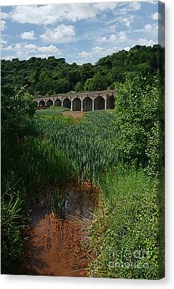 Railway Viaduct At Coalbrookdale Canvas Print by Mickey At Rawshutterbug