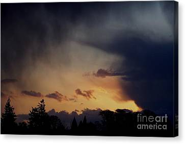 Canvas Print featuring the photograph Rain At Sunset by Erica Hanel
