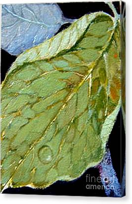 Canvas Print featuring the painting Rain Drop  by Diane Ursin