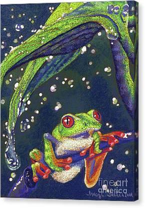 Rain Drops - Tree Frog Canvas Print by Tracy L Teeter