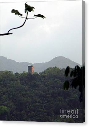 Rain Forest Puerto Rico Yokahu Observation Tower Canvas Print by Charlene Cox