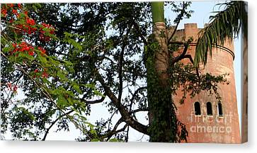 Rain Forest Puerto Rico Yokahu Observation Tower Flamboyant Tree Canvas Print by Charlene Cox