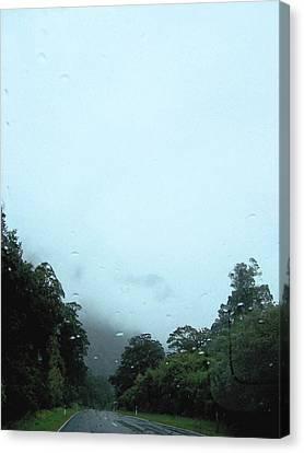 Rain Forest Rain Canvas Print