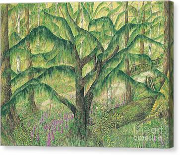 Rain Forest Washington State Canvas Print by Vicki  Housel