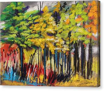Rain In The Trees Canvas Print by John Williams