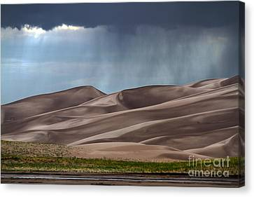 Rain On The Great Sand Dunes Canvas Print by Catherine Sherman