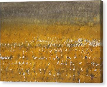 Rain Over The Marsh Canvas Print