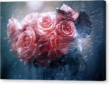 Rain Red Roses Nostalgia Canvas Print by Jenny Rainbow