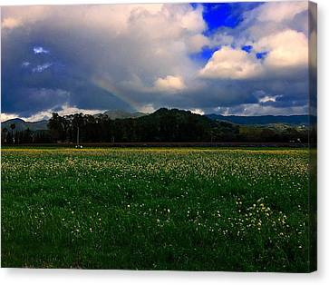 Rainbow And Flowers Canvas Print by Cadence Spalding